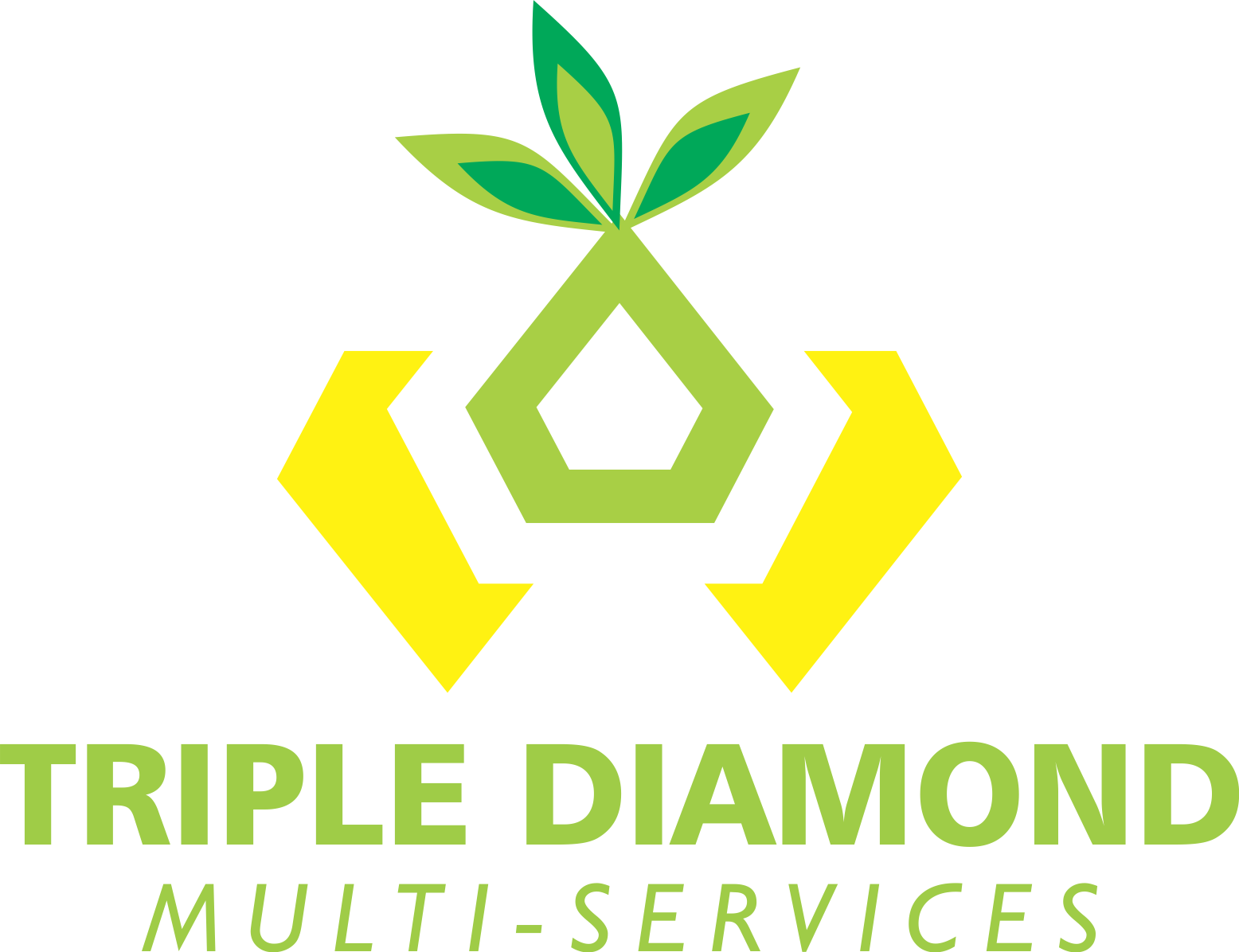 Triple Diamond Multi Services